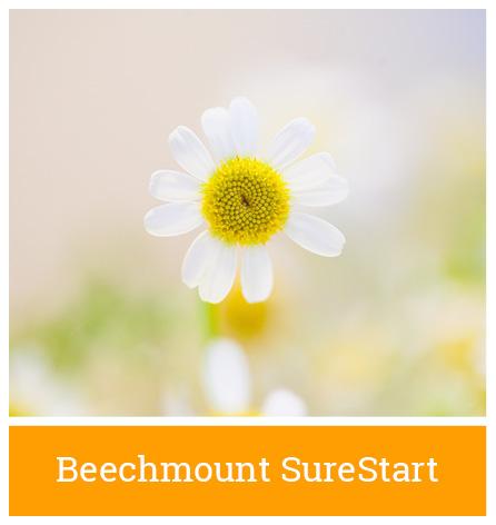 Blackie River Community Group | Beechmount SureStart